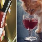Start-up produkuję wino dla kotów