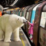 Niedźwiedź polarny naulicach Londynu!